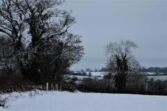Суффольк Shimpling в снеге стоковое фото