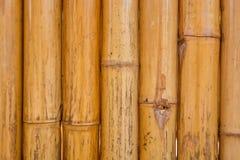 Сухая бамбуковая картина поляка Стоковая Фотография