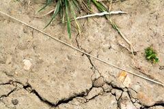 Сухая высушенная земля, - вне треснутая почва от горячего изменения температуры Стоковое Фото