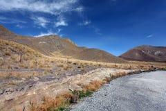 сухая гора Стоковые Фотографии RF