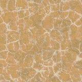 Сухая грязь стоковое фото