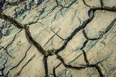 Сухая грязь, Cracked текстурировала сухую землю, для предпосылки Стоковые Фотографии RF