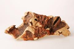 сухая древесина части Стоковые Фотографии RF