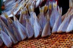 Сухая еда, Солнц-высушенная рыба, свежие продукты в рынке ` s Таиланда Стоковая Фотография