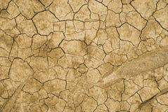 сухая земля Стоковые Фото