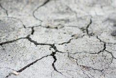 сухая земля Стоковая Фотография