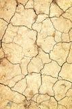 сухая земля Стоковые Фотографии RF