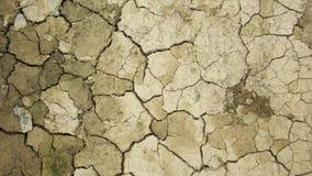 сухая земля Стоковая Фотография RF