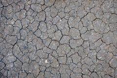 Сухая земная картина Стоковое Изображение RF