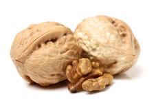 Сухая изолированная студия плодоовощ грецкого ореха Стоковая Фотография RF