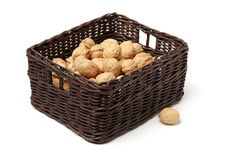 Сухая изолированная студия плодоовощ грецкого ореха Стоковое Фото
