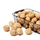 Сухая изолированная студия плодоовощ грецкого ореха Стоковые Фотографии RF