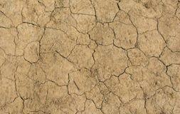 Сухая и треснутая почва Стоковые Изображения