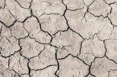 Сухая и треснутая серая земля Стоковая Фотография