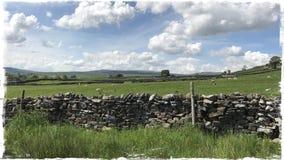 Сухая каменная стена Wensleydale Йоркшир Стоковое Изображение