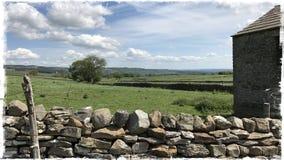 Сухая каменная стена Wensleydale Йоркшир Стоковое фото RF