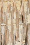 Сухая камышовая стена Стоковая Фотография