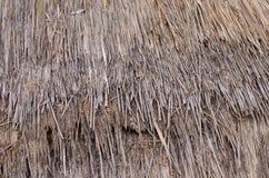 Сухая картина соломы Стоковое Изображение