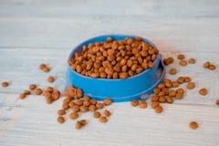 Сухая кошачья еда в голубом шаре Стоковые Фото