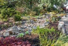 Сухая кровать потока весной стоковое фото