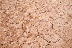 сухая малоплодородная земля Стоковая Фотография