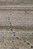 Сухая почва засушливая Стоковое Изображение