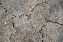 Сухая почва после дождя Стоковое Изображение RF
