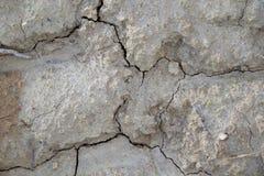 Сухая почва после дождя Стоковые Фото