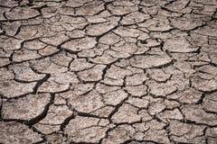 Сухая почва причиненная засухой Стоковые Изображения