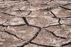 Сухая почва причиненная засухой Стоковые Фото