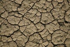 сухая почва Стоковые Изображения RF