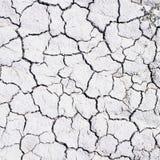 сухая почва Стоковое Изображение
