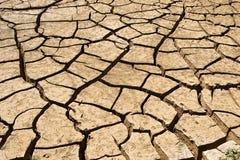 сухая почва Стоковые Изображения
