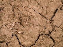 Сухая почва Стоковые Фотографии RF