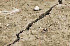 Сухая предпосылка земли и фабрики, экологическая катастрофа, засуха стоковое изображение