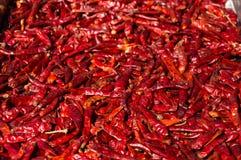 Сухая предпосылка перца красных чилей Стоковые Изображения RF