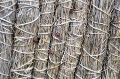 Сухая предпосылка соломы и сена красивая Стоковое Фото