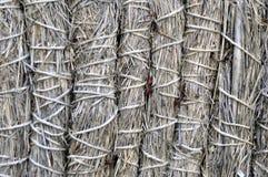 Сухая предпосылка соломы и сена красивая Стоковая Фотография