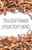 Сухая рамка квадрата лист чая Стоковая Фотография RF