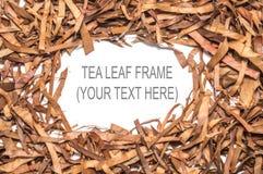 Сухая рамка квадрата лист чая Стоковые Фотографии RF