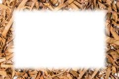 Сухая рамка квадрата лист чая Стоковые Изображения RF