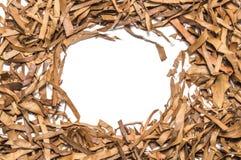 Сухая рамка квадрата лист чая Стоковые Изображения
