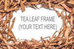 Сухая рамка квадрата лист чая Стоковое Изображение