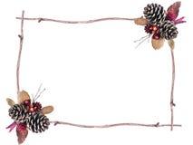 Сухая рамка цветка Стоковое Изображение