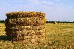 Сухая связка сена на зеленом луге, осени, голубом небе Стоковое Фото