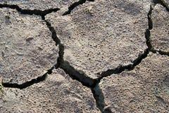 Сухая текстура земли Стоковые Фотографии RF