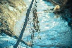 Сухая трава в предыдущей весне на солнечный день Стоковые Фотографии RF