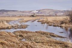 сухая трава небо гор dombaj caucasus belalakaya серое Вода большие горы горы ландшафта Стоковые Изображения RF