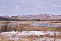 сухая трава небо гор dombaj caucasus belalakaya серое Снег белизны overcast Стоковые Изображения RF