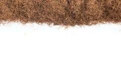 Сухая трава шелка мозоли Рамка Maydis Stigmata Стоковые Изображения RF